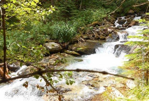 Прошёл почти ровно год с того дня, а такое впечатление, что это было вчера. Неописуемой красоты природа Архыза, Белые водопады, пушистые горы, на которые можно смотреть бесконечно. Я почему-то была уверена и ожидала увидеть скалистые голые горы. Наверное насмотрелась в своё время на фотографии Пятигорска, поэтому представляла увидеть нечто подобное. До сих пор не верится, что можно было смело пить воду, что бежала под ногами, и не бояться за последствия. фото 34