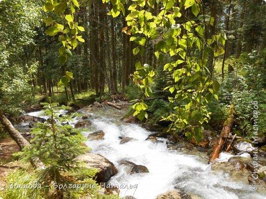 Прошёл почти ровно год с того дня, а такое впечатление, что это было вчера. Неописуемой красоты природа Архыза, Белые водопады, пушистые горы, на которые можно смотреть бесконечно. Я почему-то была уверена и ожидала увидеть скалистые голые горы. Наверное насмотрелась в своё время на фотографии Пятигорска, поэтому представляла увидеть нечто подобное. До сих пор не верится, что можно было смело пить воду, что бежала под ногами, и не бояться за последствия. фото 35