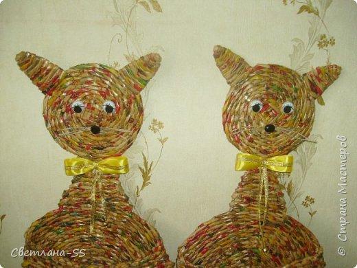 Раз кошка, два кошка... фото 2
