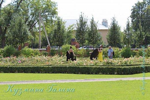 Несколько дней назад я побывала в одном из красивейших мест Воронежской области-замке принцессы Ольденбургской. Честно говоря,фоторепортаж и не собиралась делать,так как рассказывать  и показывать почти нечего.Замок реставрируется,и работы в нём,ох,как много ещё. фото 35