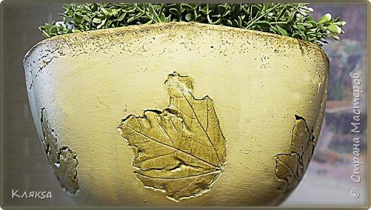Вазон из бетона с отпечатками листьев. Поделки для сада