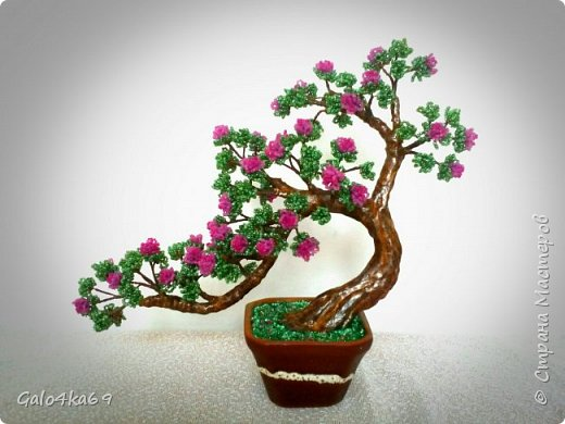 Цветущий бонсай фото 2