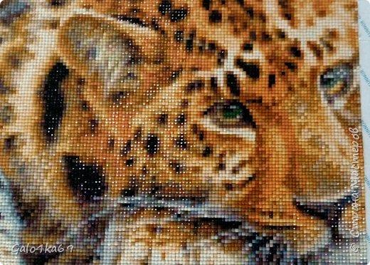 Леопард размер 40*50 см фото 2