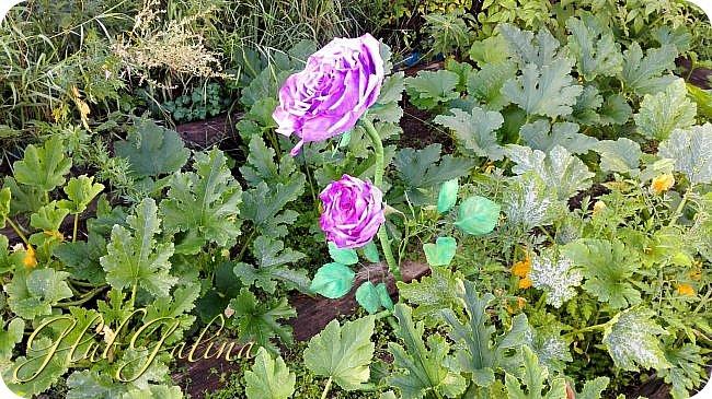 Моя пробная работа больших цветов.... фото 6