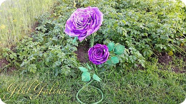 Моя пробная работа больших цветов.... фото 4
