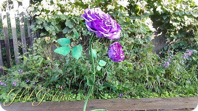 Моя пробная работа больших цветов.... фото 3