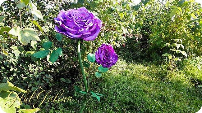 Моя пробная работа больших цветов.... фото 2