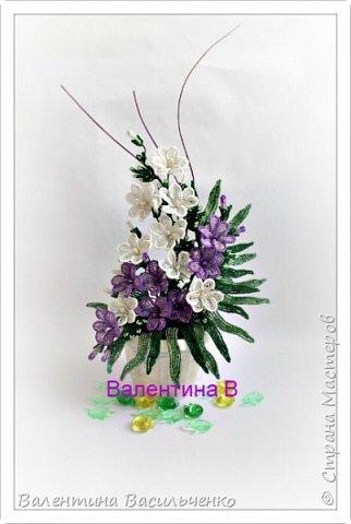 Мои новые тюльпаны. фото 2