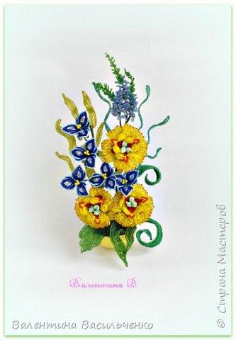 Мои новые тюльпаны. фото 5