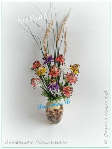 Мои новые тюльпаны. фото 4