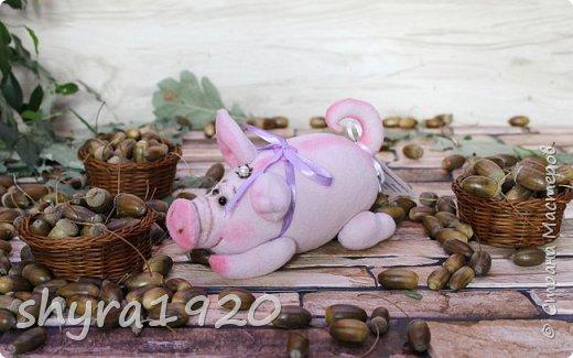Эта свинка резво пляшет, Эта - хвостиком нам машет, Эта - моет пятачок, Эта - носит паричок. Эта кушает коврижку, И зовут ее Малышка.  Автор: Доброта Н.  фото 4