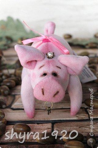Эта свинка резво пляшет, Эта - хвостиком нам машет, Эта - моет пятачок, Эта - носит паричок. Эта кушает коврижку, И зовут ее Малышка.  Автор: Доброта Н.  фото 5