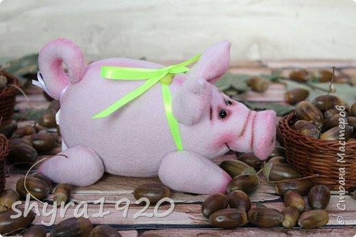 Эта свинка резво пляшет, Эта - хвостиком нам машет, Эта - моет пятачок, Эта - носит паричок. Эта кушает коврижку, И зовут ее Малышка.  Автор: Доброта Н.  фото 8