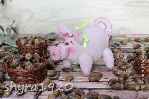 Эта свинка резво пляшет, Эта - хвостиком нам машет, Эта - моет пятачок, Эта - носит паричок. Эта кушает коврижку, И зовут ее Малышка.  Автор: Доброта Н.  фото 9