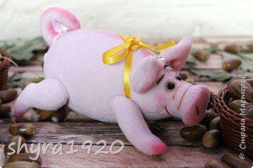 Эта свинка резво пляшет, Эта - хвостиком нам машет, Эта - моет пятачок, Эта - носит паричок. Эта кушает коврижку, И зовут ее Малышка.  Автор: Доброта Н.  фото 12