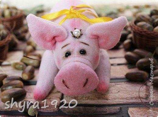 Эта свинка резво пляшет, Эта - хвостиком нам машет, Эта - моет пятачок, Эта - носит паричок. Эта кушает коврижку, И зовут ее Малышка.  Автор: Доброта Н.  фото 13