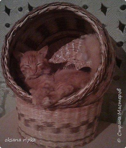 плетёнки фото 8