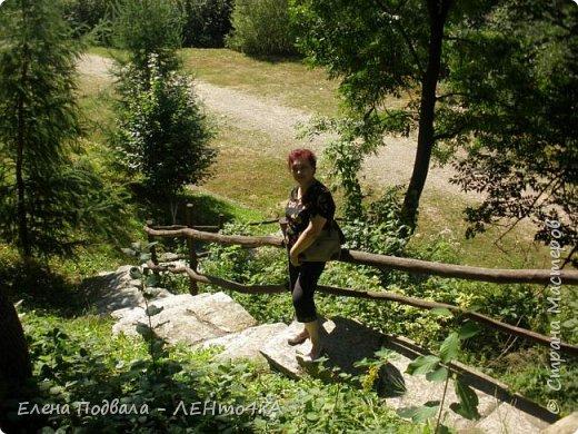 Друзья! А теперь мы с вами переместимся в потрясающе прекрасное Прикарпатское село Шешоры! Я очень люблю шешорские водопады, горные пейзажи, сельские хатки с деревянными тыночками  и лесные тропки с россыпями грибов! фото 17