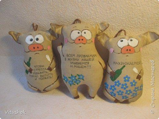 Котики и свинки) фото 4