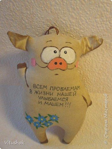 Котики и свинки) фото 12