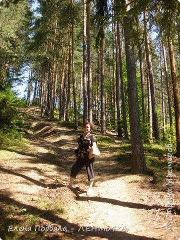 Друзья! А теперь мы с вами переместимся в потрясающе прекрасное Прикарпатское село Шешоры! Я очень люблю шешорские водопады, горные пейзажи, сельские хатки с деревянными тыночками  и лесные тропки с россыпями грибов! фото 4
