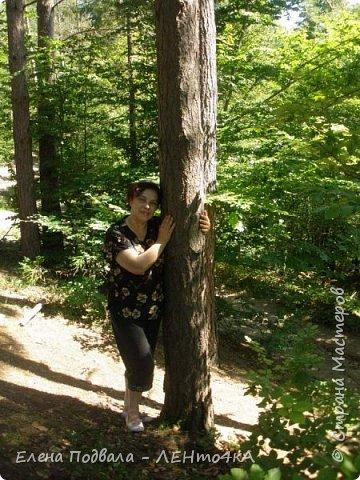 Друзья! А теперь мы с вами переместимся в потрясающе прекрасное Прикарпатское село Шешоры! Я очень люблю шешорские водопады, горные пейзажи, сельские хатки с деревянными тыночками  и лесные тропки с россыпями грибов! фото 16