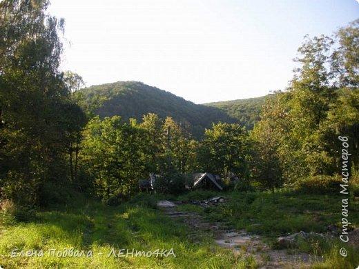 Друзья! А теперь мы с вами переместимся в потрясающе прекрасное Прикарпатское село Шешоры! Я очень люблю шешорские водопады, горные пейзажи, сельские хатки с деревянными тыночками  и лесные тропки с россыпями грибов! фото 49