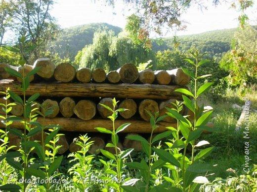 Друзья! А теперь мы с вами переместимся в потрясающе прекрасное Прикарпатское село Шешоры! Я очень люблю шешорские водопады, горные пейзажи, сельские хатки с деревянными тыночками  и лесные тропки с россыпями грибов! фото 52