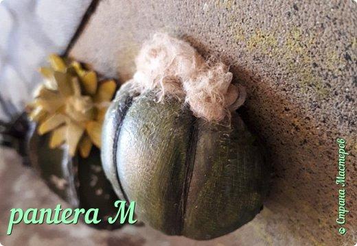 Добрый день! Картина сделана для часной кактусной оранжереи. фото 4