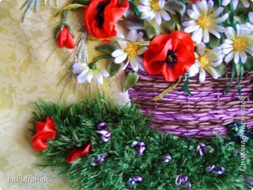 Полевые цветы фото 4