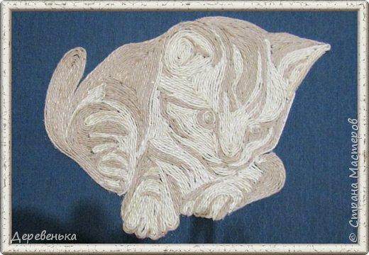 Кошечки фото 3