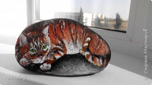 Привет всем, кто творит и интересуется! Я Вера. Хочется поделиться идеями, пусть не новыми, но прикольными. Увидела в интернете как художница (по-моему итальянка, хотя могу ошибаться) рисует на камнях. И возникла идея: почему бы не попробовать и мне вписать их в ландшафтный дизайн? Вот, что получилось.   Понравилась картинка с котами.В процессе они видоизменились, но мне все равно нравятся. фото 8