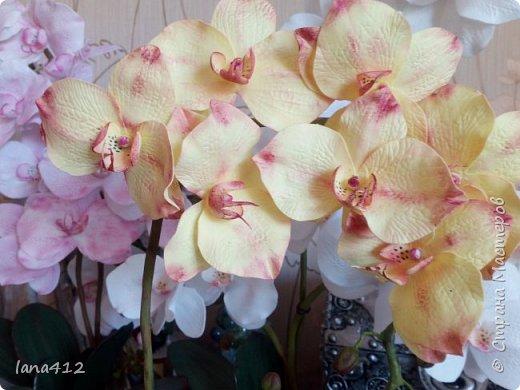 всем привет! сегодня у меня орхидеи из фома.( обкатка ствола и бутончики  из х\ф) фото 12
