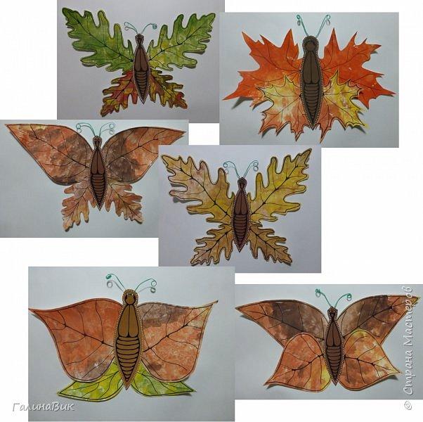 Всем добрый вечер! Для оформления школьного стенда ко Дню знаний придумала образы листьев в виде бабочек. фото 1