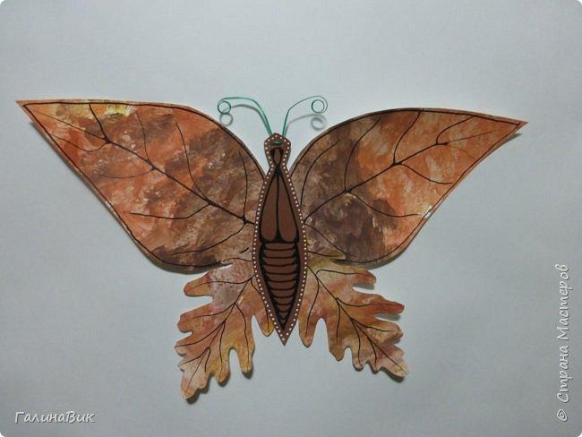 Всем добрый вечер! Для оформления школьного стенда ко Дню знаний придумала образы листьев в виде бабочек. фото 4