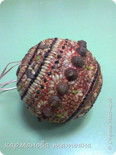 Мозаика из природного материала на пластилине. На пластмассовом шаре, сверху покрыто лаком. Работа моей ученицы. фото 1
