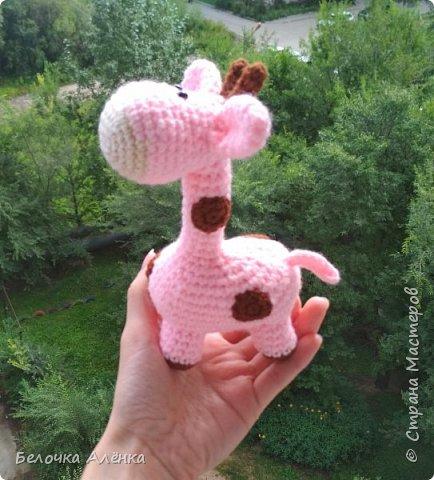 Всем привет! Сегодня совсем небольшой пост, как и игрушка, которой он посвящён :)  Сегодня закончила вязать вот такого жирафика. Я подумала, что раз есть розовый слон, то почему бы не быть розовому жирафу)  фото 4