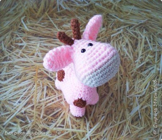 Всем привет! Сегодня совсем небольшой пост, как и игрушка, которой он посвящён :)  Сегодня закончила вязать вот такого жирафика. Я подумала, что раз есть розовый слон, то почему бы не быть розовому жирафу)  фото 5