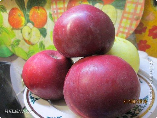 Яблок в этом году очень много.А ребёнок не ест,вот и изобретаю .Готовила внуче .Ну и делюсь процессом,может кому понравится.Фото делала на бегу. фото 5