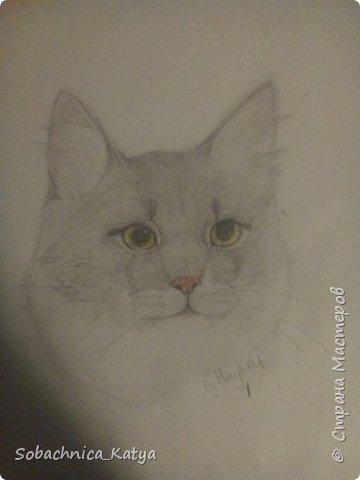Всем снова привет! Давненько я не показывала вам своих рисунков, но их накопилось достаточно много.  Вот мой летний рисуночек акварелью. Акварелью я рисую вообще редко, в основном карандаши..но думаю этот рисунок удался) фото 20