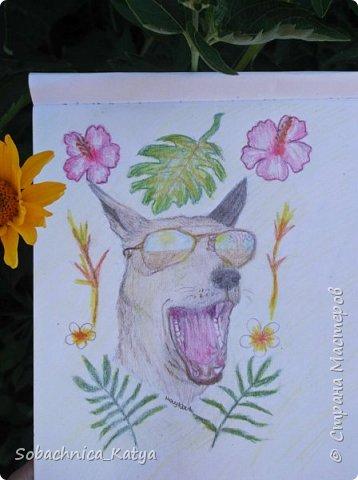 Всем снова привет! Давненько я не показывала вам своих рисунков, но их накопилось достаточно много.  Вот мой летний рисуночек акварелью. Акварелью я рисую вообще редко, в основном карандаши..но думаю этот рисунок удался) фото 11