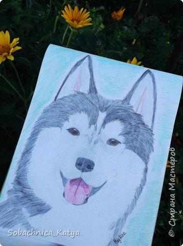 Всем снова привет! Давненько я не показывала вам своих рисунков, но их накопилось достаточно много.  Вот мой летний рисуночек акварелью. Акварелью я рисую вообще редко, в основном карандаши..но думаю этот рисунок удался) фото 12