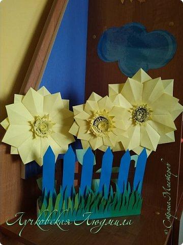 Такие вот подсолнухи, в технике оригами, сделала для украшения группы в детском саду. фото 1