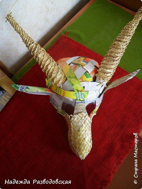 Для детского фольклорного ансамбля понадобилась маска козы из соломки. Попросили меня сделать такую маску. Да ещё букетик из снопа колосков в виде цветка в качестве презента, так как ансамбль готовился к выступлению в Польше на дожинках. фото 7