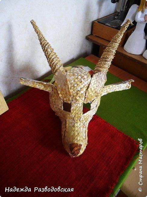 Для детского фольклорного ансамбля понадобилась маска козы из соломки. Попросили меня сделать такую маску. Да ещё букетик из снопа колосков в виде цветка в качестве презента, так как ансамбль готовился к выступлению в Польше на дожинках. фото 8