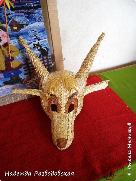 Для детского фольклорного ансамбля понадобилась маска козы из соломки. Попросили меня сделать такую маску. Да ещё букетик из снопа колосков в виде цветка в качестве презента, так как ансамбль готовился к выступлению в Польше на дожинках. фото 11