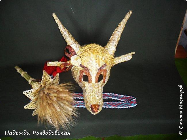 Для детского фольклорного ансамбля понадобилась маска козы из соломки. Попросили меня сделать такую маску. Да ещё букетик из снопа колосков в виде цветка в качестве презента, так как ансамбль готовился к выступлению в Польше на дожинках. фото 1