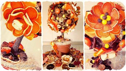 Топиарий из искусственных цветов из апельсиновой кожуры от Алены Тихоновой фото 1