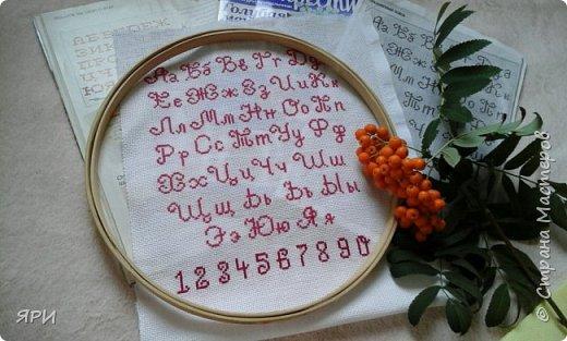 Новая схема алфавита, очень понравилась) фото 1