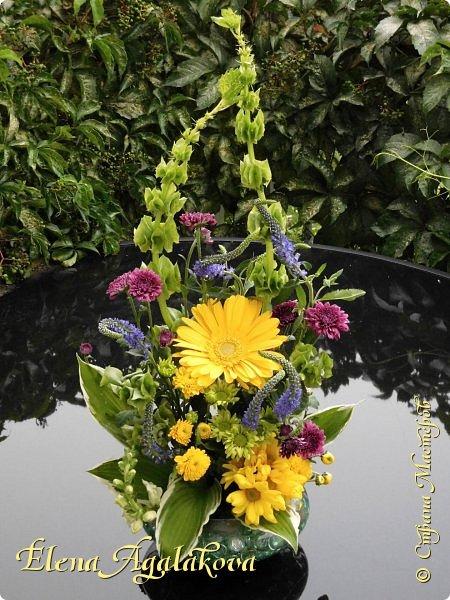 Добрый день! Этим летом я решила осуществить еще одну свою мечту - научится цветочному дизайну. Очень люблю цветы, травки-муравки, деревья и вообще все растения. Уже третий месяц я учусь создавать красоту! Очень увлекательно работать с цветами! Я взяла небольшой курс по цветочному дизайну. Дома делаю оранжировки из того что под рукой, беру цветы из своего садика. Другие композиции делала для цветочного магазина где прохожу практику. Начинаю работать цветочным дизайнером, пожелайте мне успеха. Делюсь красотой! фото 3